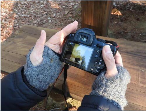 森の家、カメラ部。