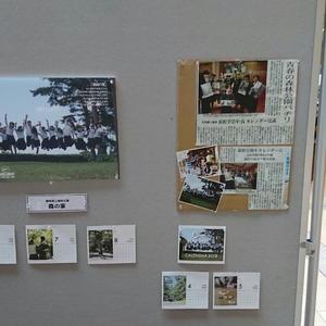 写真:森林公園勝手に応援団パネル展示