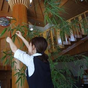 写真:森の家七夕 WEEK!!