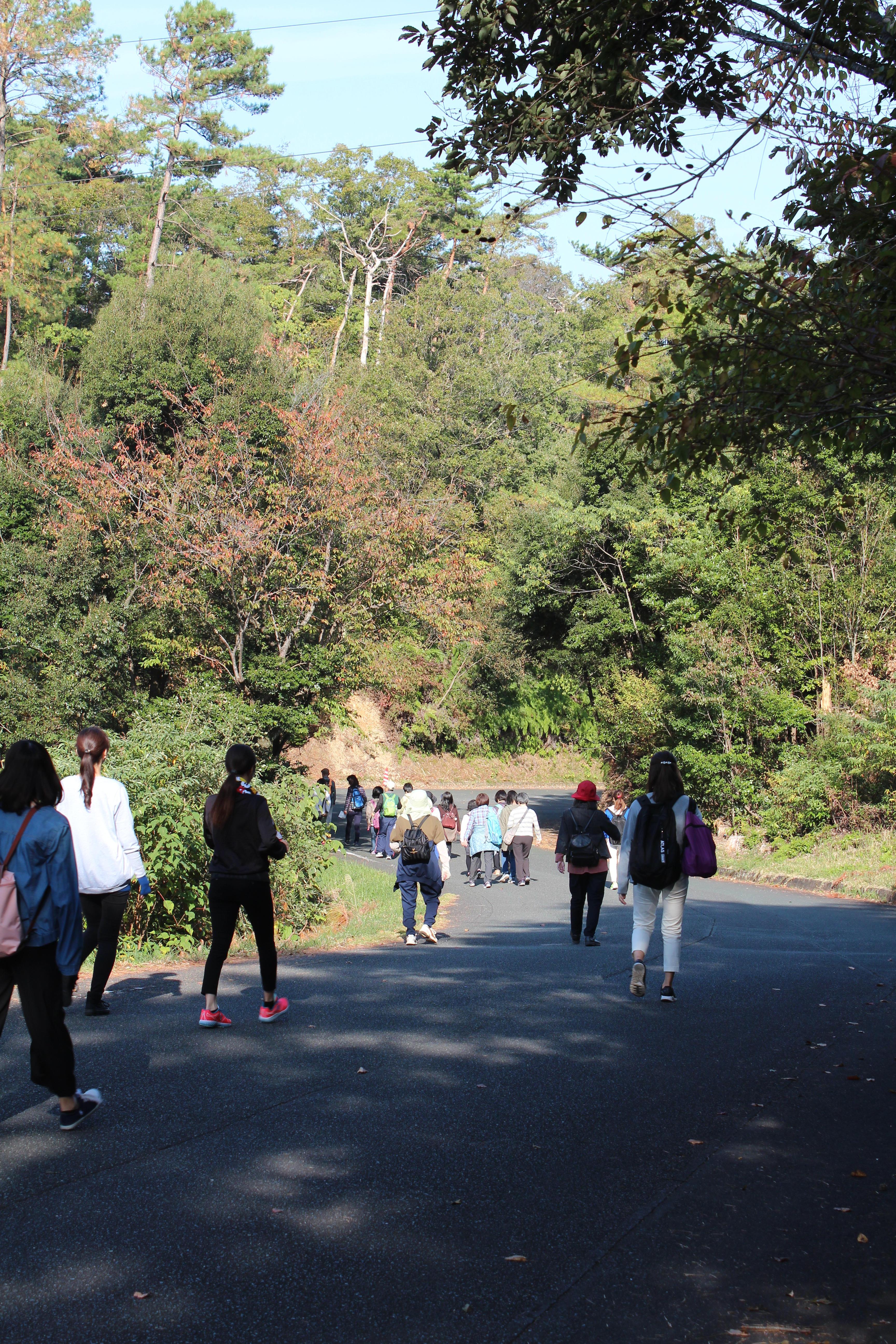 「鮮やかに色づく森林公園を歩こう」 健康ウォーキング開催されました。