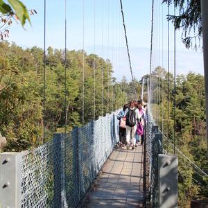 写真:「鮮やかに色づく森林公園を歩こう」 健康ウォーキング開催されました。