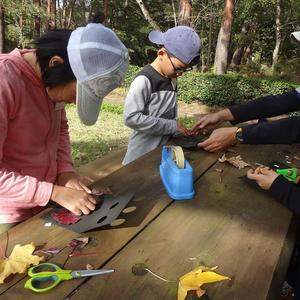 写真:ネイチャーゲーム【木の実をさがそう】開催しました!