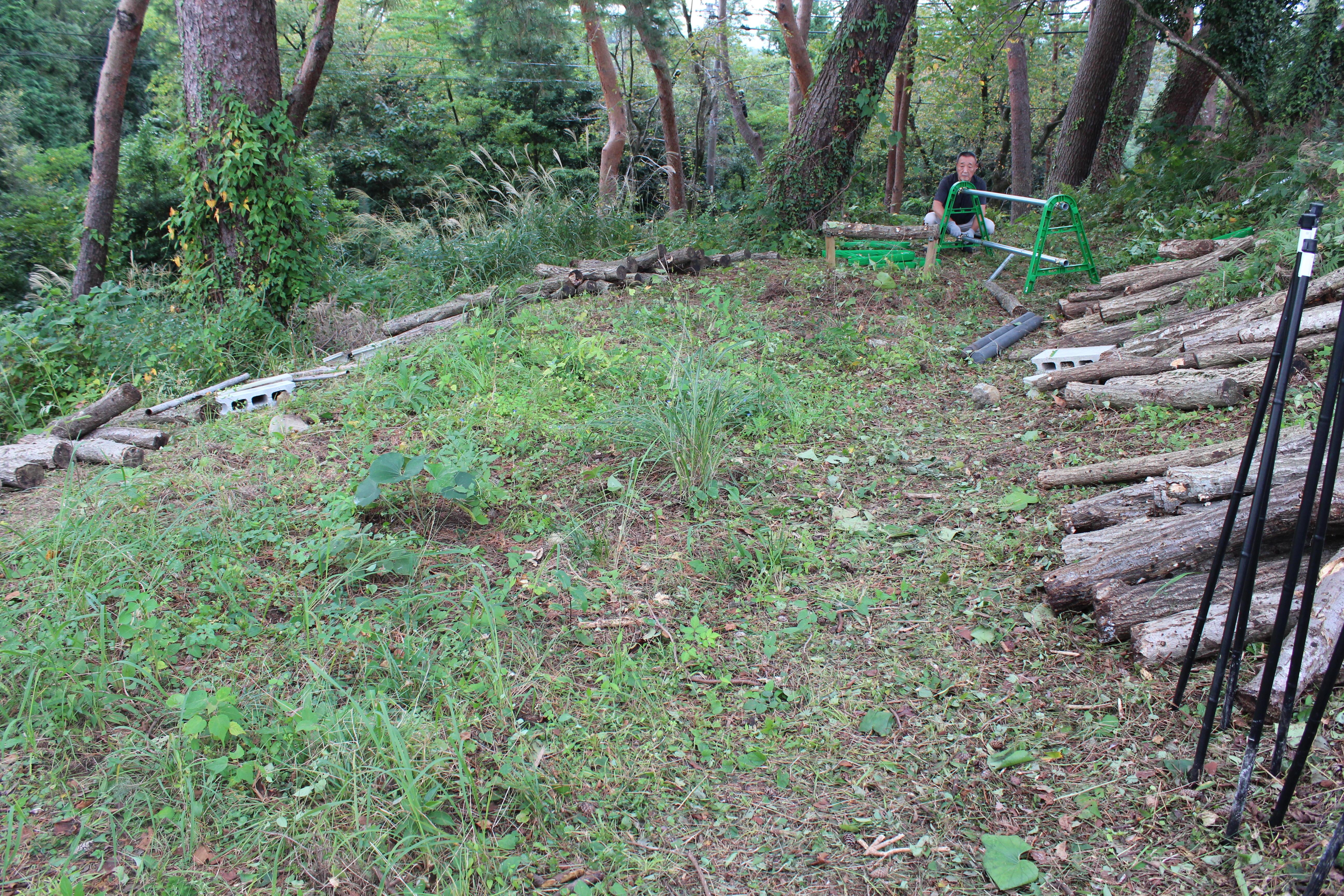 原木シイタケ ほだ場を整地しました。