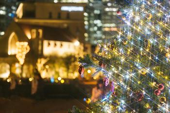 写真:森コン④森で恋するあま~いクリスマス