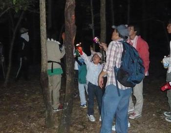 写真:ムシムシナイト~夜の昆虫観察~ 7月23日(木)~8月10日(月)