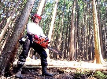 写真:親子木こり体験~未来につなぐ赤松の森づくり~