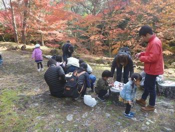 写真:ネイチャーゲーム④色とりどりの秋の森