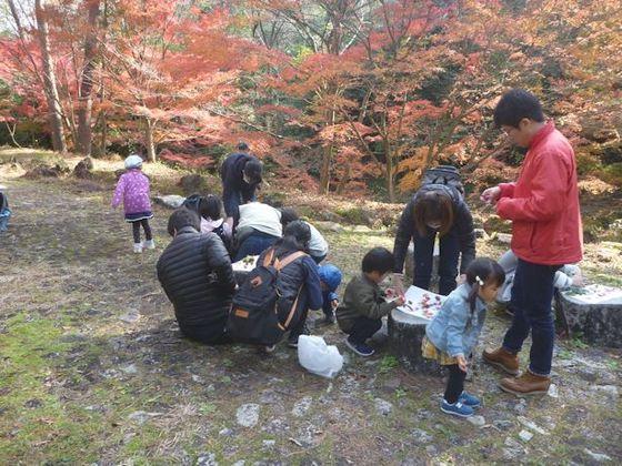 写真: ネイチャーゲーム④色とりどりの秋の森
