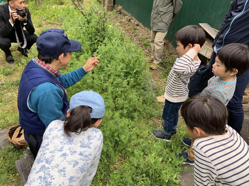 写真: あつまる企画! マミたん&ニーチャの四季の森お楽しみツアー(4月)