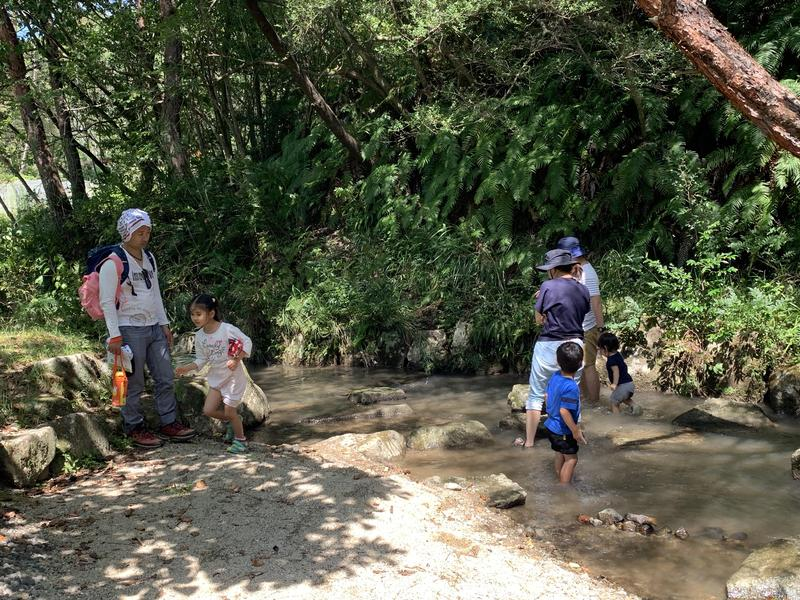写真:あつまる企画! マミたん&ニーチャの四季の森お楽しみツアー(8月)